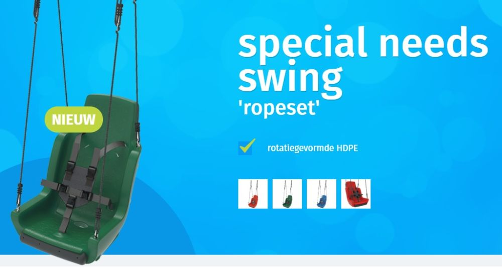 Special need swing