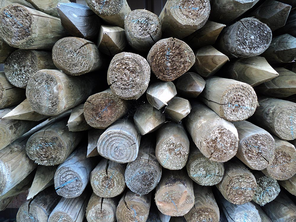 Rondhout met of zonder punt
